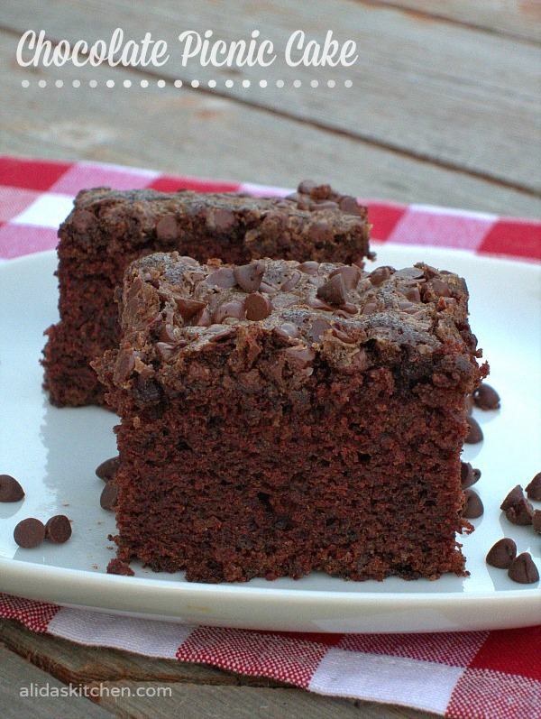 Chocolate Picnic Cake | alidaskitchen.com #recipes #chocolate #cake #picnic